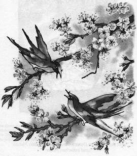 bild-1-guan-mei-shu